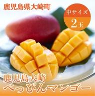 「鹿児島大崎べっぴんマンゴー」中2玉