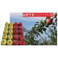 11月 贈答用 津軽のおまかせりんご約5kg 2種以上(早生ふじ、とき、星の金貨、ジョナゴールド等)