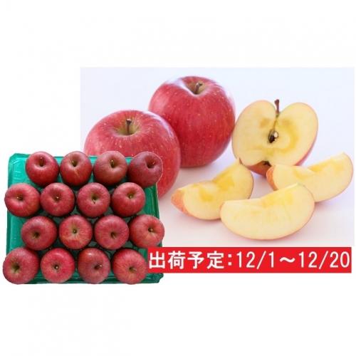 年内 津軽産 蜜入りサンふじ約5kg