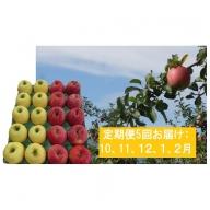 定期便5回 津軽のりんご便り約5kg(2種以上詰合せ)※クレジットのみ