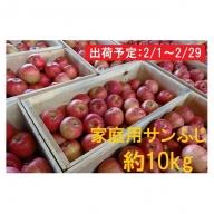 2月 津軽産 家庭用サンふじ約10kg