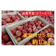 3月 津軽産 家庭用サンふじ約10kg