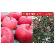 12月 土岐りんご園 有袋ふじ約3kg秀 五所川原市産
