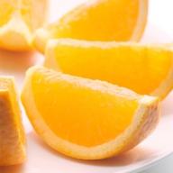 <3月発送>家庭用完熟清見オレンジ4.5kg