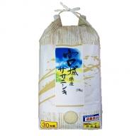 【平成30年】 宮城県産 減農薬米 「ササニシキ」 精米 20kg