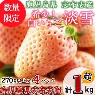 b5-045 特別栽培農産物 いちごの村から朝摘み『淡雪』4Pセット