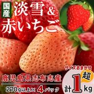 a5-053 志布志発祥白いちご「淡雪」2Pと季節おまかせ赤いちご2P