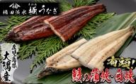 b5-046 楠田の極うなぎ蒲焼き白焼き 大 4尾