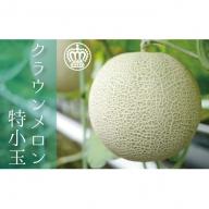 クラウンメロン白特小 1.0~1.1kg