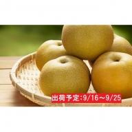 最高級 蔵王の梨(豊水)約5kg特秀・大玉