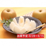 最高級 蔵王の梨(幸水)約5kg特秀・大玉