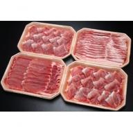 【C-154】庄内産おいしい豚肉メガ盛りセット