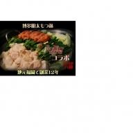 [A1566]博多明太もつ鍋セット(2~3人前)