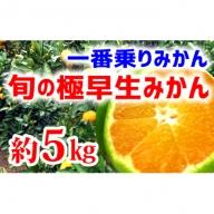 【極早生みかん】旬の極早生5kg(2S~L)
