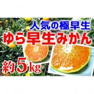 【極早生みかん】ゆら早生4kg(2S~L)紀州グルメ市場