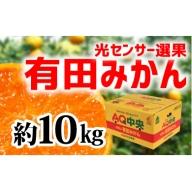 【秀選品】有田みかん 光センサー選果 10kg(S~L)