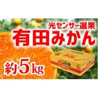 【秀選品】有田みかん 光センサー選果 5kg(S~L)