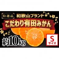 【こだわり】有田みかん たっぷり10kg(Sサイズ指定)