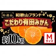 【こだわり】有田みかん たっぷり10kg(Mサイズ指定)