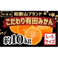【こだわり】有田みかん 10kg(L~Sサイズ)
