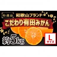 【こだわり】有田みかん 5kg(L~Sサイズ)