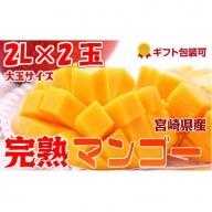 2019年5月中旬から順次出荷<大玉 2L サイズ>宮崎県産 完熟マンゴー 2玉 化粧箱入り【B211】