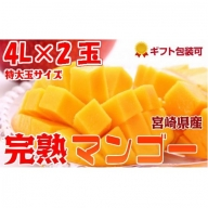 2019年5月中旬から順次出荷<特大 4L サイズ>宮崎県産 完熟マンゴー 2玉 化粧箱入り【C78】