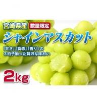 <早期予約受付>宮崎県産シャインマスカット2kg(3~6房)【C245】