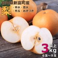 旬の品種をお届け!<石村果樹園の梨 3kg以上>※2020年8月初旬~9月中旬の収穫期間内に出荷【A101】