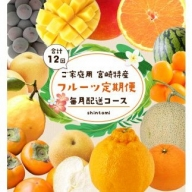 ご家庭用<宮崎特産フルーツ定期便 毎月配送コース>【F33】