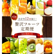 【先行予約】贅沢フルーツ定期便<全12回>【F26】