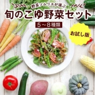 【お試し版】野菜ソムリエが選ぶ<旬のこゆ野菜セット>【A103】