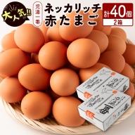 <児湯養鶏自慢の卵>ネッカリッチ赤たまご「児湯一番」40個【B19】