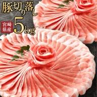 小分けで便利!10パックでお届け<宮崎県産豚肉5kg切落し>【C240】