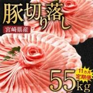 宮崎県産豚肉定期便<毎月5kg×11回 合計55kg>【F17】