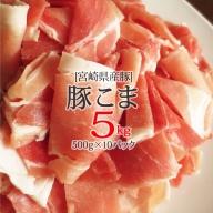 宮崎県産豚こま肉5kg(500g×10パック)※90日以内出荷【B236】