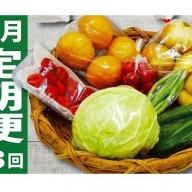 [A6002]年6回定期便★野菜・フルーツ8~10品