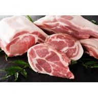 A109-1 山形県産豚肉3種盛り 約2500gセット