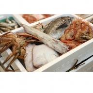 日本海の獲れたて鮮魚詰合せ(小)下処理済み