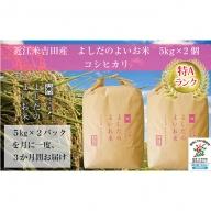 令和元年産よしだのよいお米近江米コシヒカリ 10kg×3回