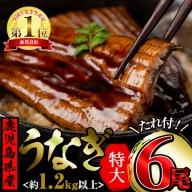 【45355】大隅産 鰻の蒲焼 特大サイズ×6尾