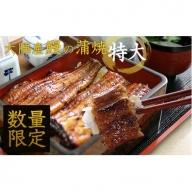 【44355】たっぷりお得感!大隅産 鰻の蒲焼 特大サイズ×6尾