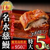 c6-027 鹿児島県産うなぎ蒲焼名水慈鰻 特大5尾