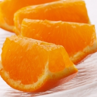 <5月発送>セミノールオレンジ3kg