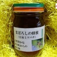 【A51001】日本ミツバチ蜂蜜