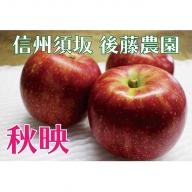 【後藤農園直送】もぎたて!秋映(りんご)約5kg(11~18玉入)