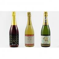 スパークリングワイン3種セット