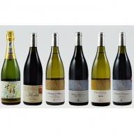 高級ワイン詰め合わせ6種セット