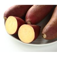 【P14009】鹿児島県産上質絹甘芋シルクスイート《先行予約》(約2kg)