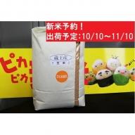 新米・蔵王産ひとめぼれ10kg(玄米)